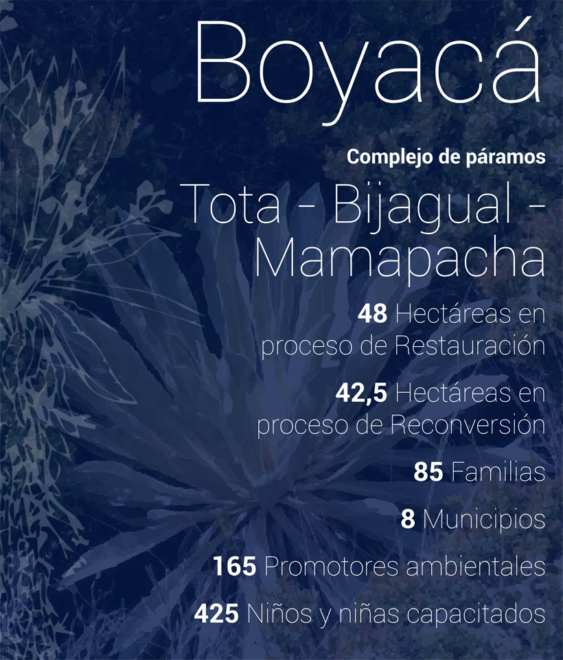 Tota-bijagual-mamapacha