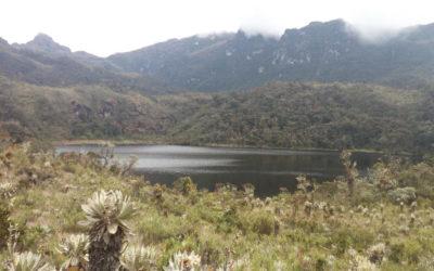 La Región central contribuye diariamente a cuidar el agua